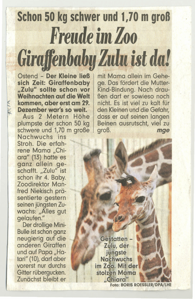 This article was published in Die BILD in Germany.