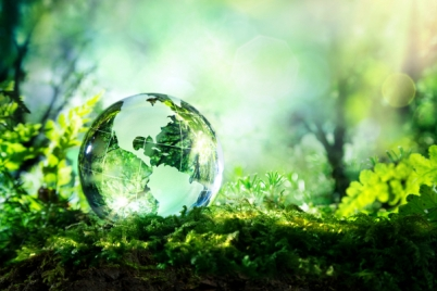 green-globe-in-green-field-with-trees